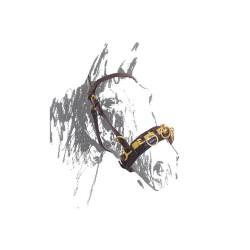 Cavezzone da doma in cuoio con fibbie ottone Umbria Equitazione